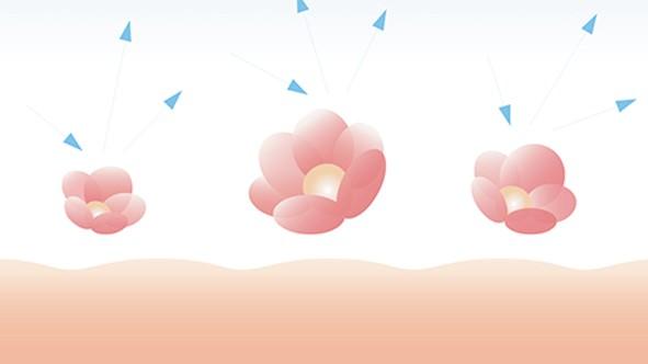 CEFINE水感蠶絲粉餅芯的花型粒子