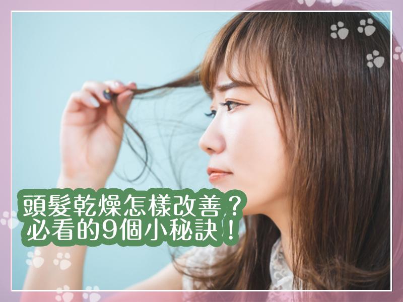 頭髮乾燥的改善、解決方法